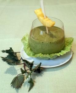 Brennnessel_Ananas_Salat