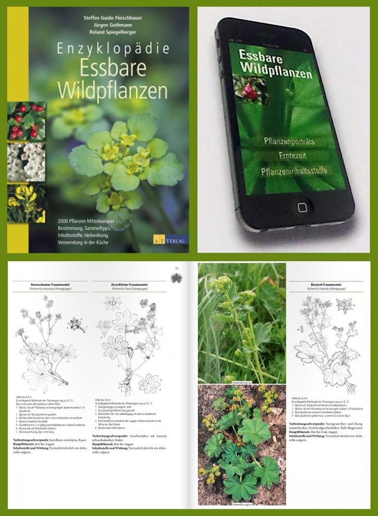 Enzyklopaedie_Essbare_Wildpflanzen